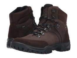 ECCO Sport Xpedition III GTX (Coffee) Men's Hiking Boots