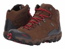 Oboz Bridger BDRY (Scotch Brown) Men's Hiking Boots